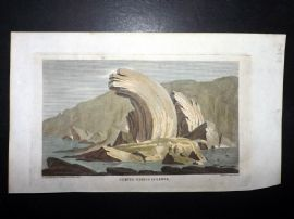 Simeon Shaw 1823 HCol Print. Curved Gneiss in Lewis